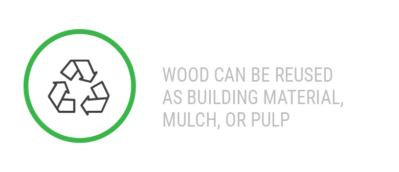 Wood can be reused as building material, mulch, or pulp